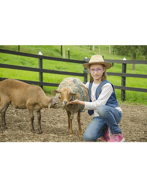 niña-acariciando-ovejas
