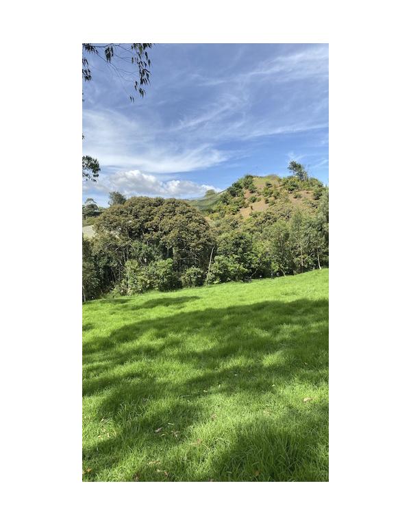 paisajes-verdes-3